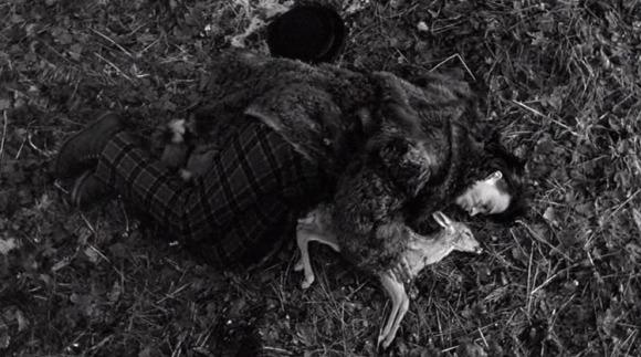 dead-man-deer